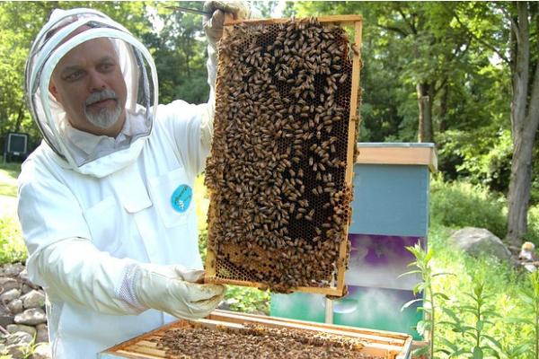 beekeeping protective clothing