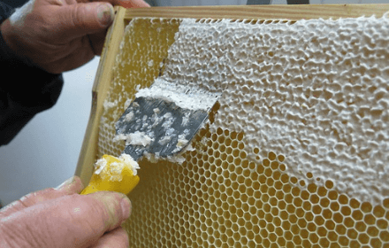 honey uncapping tools
